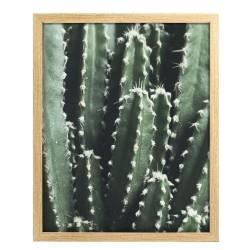 Image encadrée Cactus 40x50 cm baguette en bois FSC