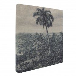 Album photo traditionnel palmier 600 photos 10x15 cm