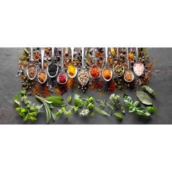 Tableau sur verre synthétique cuillères d'épices 65x145 cm
